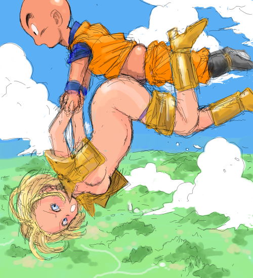 android krillin dbz and 18 D. gray man lenalee