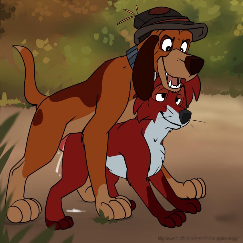 fox and 2 the hound cash Oniichan dakedo ai sae areba kankeinai yo ne