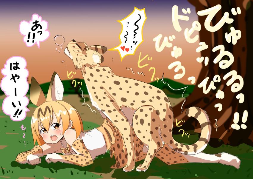 hataage-kemono-michi Green lantern the animated series torrent
